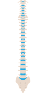 spinal problems